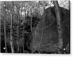Boulders And Yellow Birch Acrylic Print
