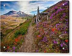 Boundary Trail Acrylic Print by Darren  White