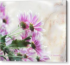 Acrylic Print featuring the photograph Bouquet In Pink by Joan Bertucci