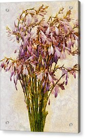 Bouquet Of Hostas Acrylic Print