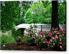Bow Bridge In Springtime Acrylic Print by Christopher Kirby