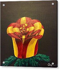 Bow Rose Acrylic Print