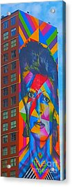 Bowie Acrylic Print by Stacey Brooks