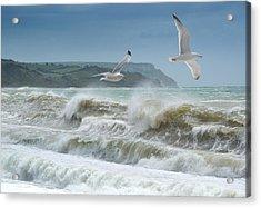 Bowleaze Cove Acrylic Print