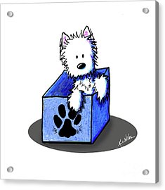Boxed In Cuteness Acrylic Print by Kim Niles