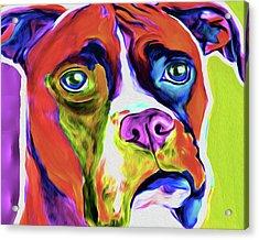 Boxer 5a By Nixo Acrylic Print