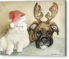 Boxer And Persian Cat Christmas Acrylic Print by Charlotte Yealey
