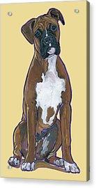 Boxer Bentley Acrylic Print