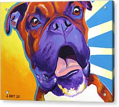 Boxer - Chance Acrylic Print by Alicia VanNoy Call