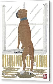 Boxer Dog Art Hand-torn Newspaper Collage Art Acrylic Print by Keiko Suzuki Bless Hue