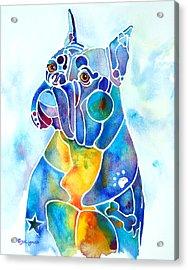 Boxer Dog Breed Blues Acrylic Print by Jo Lynch
