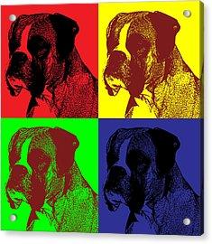 Boxer Dog Pop Art Style Acrylic Print by James Bryson