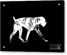 Boxer Dog Tee White Ink Acrylic Print by Edward Fielding