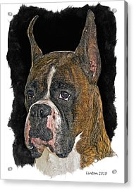 Boxer Acrylic Print by Larry Linton