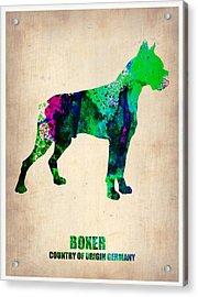 Boxer Poster Acrylic Print