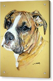 Boxer Acrylic Print by Tanya Patey