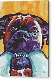 Boxy Boxer Acrylic Print by Lea