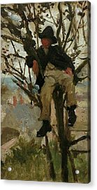 Acrylic Print featuring the painting Boy In A Tree by Henry Scott Tuke