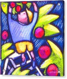 Boy Picking Apples Acrylic Print by Angelina Marino