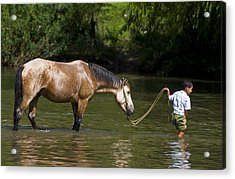 Boy With Horse Acrylic Print by Kobby Dagan