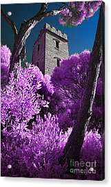 Boyd Tower 2 Acrylic Print