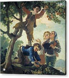 Boys Catching Fruit Acrylic Print