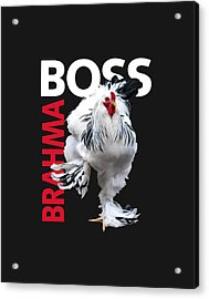 Brahma Boss II T-shirt Print Acrylic Print