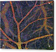 Brain Tissue Blood Supply Acrylic Print by Thomas Deerinck, Ncmir