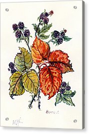 Bramble Acrylic Print by Nell Hill