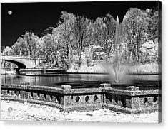 Acrylic Print featuring the photograph Branch Brook Park New Jersey Ir by Susan Candelario