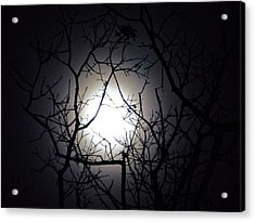 Branches To The Moon Acrylic Print