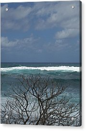 Branches Waves And Sky Acrylic Print