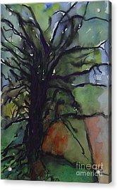 Branching Acrylic Print by Leila Atkinson