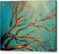 Branching Out Acrylic Print by Dina Dargo
