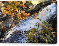 D30a-18 Brandywine Falls Photo Acrylic Print
