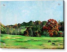 Beaver Valley Acrylic Print