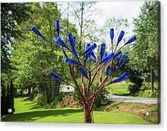 Brass Tree, Blue Bottle Leaves Acrylic Print
