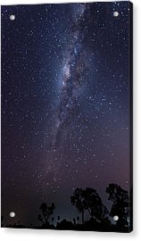 Acrylic Print featuring the photograph Brazil By Starlight by Alex Lapidus