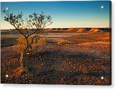 Breakaway Dawn Acrylic Print by Mike  Dawson
