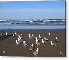 Breakfast At Cannon Beach Acrylic Print by Will Borden