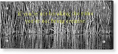 Acrylic Print featuring the photograph Breaking The Rules by Britt Runyon