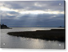 Acrylic Print featuring the photograph Breaking Through by Rick McKinney