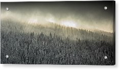 Breaking Through The Darkness Acrylic Print
