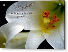 Breath Of Life Acrylic Print by Debra Straub