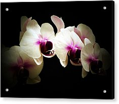 Breathless Beauty Acrylic Print