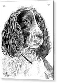 Brecon Acrylic Print