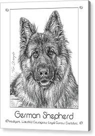 Breed Poster German Shepherd Acrylic Print by Tim Wemple
