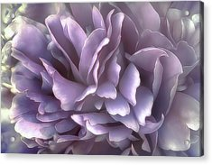 Breeze In Cool Lilac Acrylic Print
