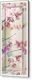 Acrylic Print featuring the photograph Breezy Blossom Panel by Jessica Jenney