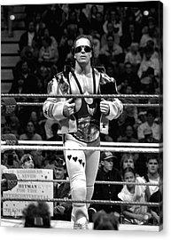 Bret Hart Intercontinental Champion Acrylic Print by Bill Cubitt